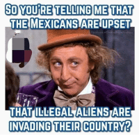 MORE LOL.: SO YOU RE TELLING ME THAT  THE MEXICANS ARE UPSET  acebook oTheRedRightAndYou  THAT ILLEGAL ALIENSTARE  NVADING THEIR COUNTRY? MORE LOL.