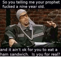 sandwich: So you telling me your prophet  fucked a nine year old.  and it ain't ok for you to eat a  ham sandwich. Is you for real?
