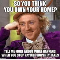Memes, 🤖, and Org: SO YOU THINK  YOU OWN YOUR HOME  TELL ME MORE ABOUT WHATHAPPENS  WHEN YOU STOP PAYINGPROPERTY TAXES  imgflip.com How high are your property taxes? https://www.lp.org/membership/