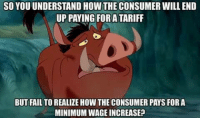 Memes, 🤖, and Consumate: SO YOU UNDERSTAND HOW THE CONSUMER WILL END  UP PAYING FOR ATARIFF  BUT FAIL TO REALIZE HOW THE CONSUMER PAYS FOR A  MINIMUMWAGE INCREASE?