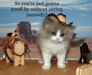 You, Dead, and Youre: So you're just gonna  scroll by without saying  meowdy? If you do, you're dead to me