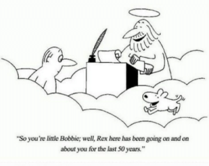 "To all of you who have lost your best friends: ""So you're little Bobbie; well, Rex here has been going on and on  about you for the last 50 years."" To all of you who have lost your best friends"