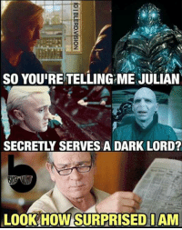 Memes, 🤖, and Secret: SO YOURE TELLING ME JULIAN  SECRETLY SERVESADARK LORD?  LOOK HOW SURPRISEDIAM