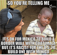 Memes, Mexico, and Racist: SO YOURE TELLING ME  POINT USA  ITS OK FOR MEXICO TO BUILD A  BORDER WALL WITH GUATEMALA  BUTITS RACIST FOR THE U SATO  BUILD ONE WITH MEXICO