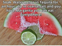 Dank, Tequila, and 🤖: Soak Watermelon in Tequila for  an hour, dip in coarse salt and you  have Margarita you can eat  Everywhere! You're welcome.