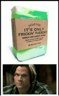 Homeless, Memes, and Smell: SOAP FOR  IT'S ONLY  FRICKIN TUESDA  SMELLS suowmomNG It's Tuesday where I am. Appropriate. The Homeless Network
