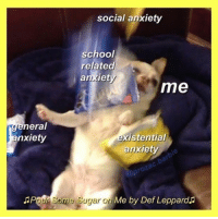 Barbie, School, and Anxiety: social anxiety  school  related  andiety  me  general  nxiety  xistential  anxiety  prozac.barbie  ouf Some Sugar on  Me by Def Leppards