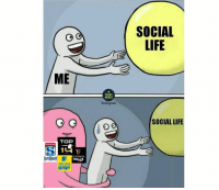 Life, Memes, and Rugby: SOCIAL  LIFE  ME  RUGBY  MEMES  Jnstagram  SOCIAL LIFE  TOP  Ovodocom  冏 1  SUPERUGBY  GUINNESS  AVIVA  PREMIERSHIP  RUGBY Situation 😂😂 rugby superrugby pro14 top14 premiership