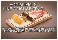 Trap, Free, and Mouse: SOCIALISM IS  LIKE A MOUSE TRAP  IT WORKS BECAUSE THE MOUSE DOESN'T  UNDERSTAND WHY THE CHEESE IS FREE.