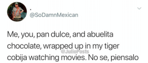 Movies, Netflix, and Chocolate: @SoDamnMexican  Me, you, pan dulce, and abuelita  chocolate, wrapped up in my tiger  cobija watching movies. No se, piensalo  @JulioPosts Netflix  pan dulce
