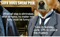 Dogs, Funny, and Memes: SOFA DOGS SNEAK PEEK  When all else is eliminated  what remains, no matter ho  furry, must be funny  Tune in Sunday,  June 17th to unlock  the mystery