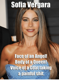 Sofia Vergara  Face of an Angel  Body of a Queen!  Voice ofa Goat taking  a painful shit