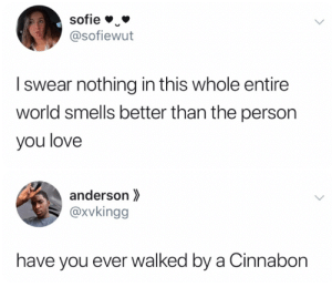 anderson: sofie  @sofiewut  Iswear nothing in this whole entire  world smells better than the person  you love  anderson  @xvkingg  have you ever walked by a Cinnabon