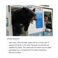Soft serve  animal-factbook:  Like many other animals, bears will try to find a job to  support its family in the wild. However not all jobs are  suitable for bears. This particular ice cream truck's sales  decreased by a whopping 87.5% after employing  Barney the Bear. :( bears