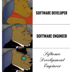 Programming, Software, and Engineer: SOFTWARE DEVELOPER  SOFTWARE ENGINEER (OC) Stay classy, my fellow programming kin