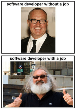 Software, Job, and Gone: software developer without a job  software developer with a job  HIEV developers gone feral