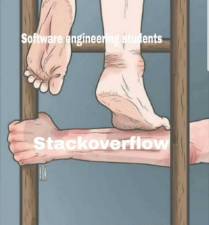 Software, Godfather, and Stackoverflow: Software enginee  ents  Stackoverflow Our godfather