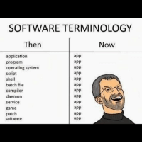 Memes, Game, and 🤖: SOFTWARE TERMINOLOGY  Then  Now  application  program  operating system  script  shell  batch file  compiler  daemon  service  game  patch  software  app  app  app  app  app  app  app  app  app  app  app  app badsciencejokes