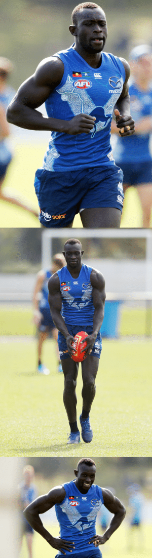 Tumblr, Blog, and Http: sok   AFD roscoe66:  Majak Daw of the North Melbourne Kangaroos