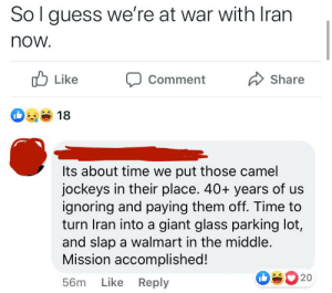 Hawk calls Iranians slurs and calls for the destruction of Iran: Sol guess we're at war with Iran  now.  O Like  Share  Comment  18  Its about time we put those camel  jockeys in their place. 40+ years of us  ignoring and paying them off. Time to  turn Iran into a giant glass parking lot,  and slap a walmart in the middle.  Mission accomplished!  20  Like Reply  56m Hawk calls Iranians slurs and calls for the destruction of Iran