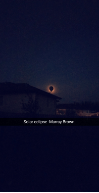 solar eclipse: Solar eclipse -Murray Brown