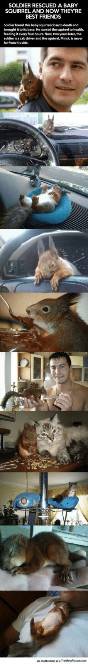 lolzandtrollz:  Just A Soldier And His Best Friend: SOLDIER RESCUED A BABY  SQUIRREL AND NOW THEY'RE  BEST FRIENDS  Soldier found this baby squirrel close to death and  brought it to its base. He nursed the squirrel to health,  feeding it every four hours. Now, two years later, the  soldier is a cab driver and the squirrel, Minsk, is never  farfrom his side. lolzandtrollz:  Just A Soldier And His Best Friend