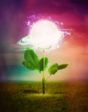 soldierpallaton: viedzma:  luminous-drago:  writing-prompt-s:   seamlessoo: The Flower Image Prompt   This is what a galaxy actually looks like, we just don't have the proper equipment to see it. Our entire universe is an old woman's lovingly tended garden.   Are you fucking kidding me? Judging from our history, we're more like the weeds on some backyard    Hold on, Earth might be bad but to judge the galaxy as that is just not true. The galaxy is a flower, Earth is just a wilted petal. : soldierpallaton: viedzma:  luminous-drago:  writing-prompt-s:   seamlessoo: The Flower Image Prompt   This is what a galaxy actually looks like, we just don't have the proper equipment to see it. Our entire universe is an old woman's lovingly tended garden.   Are you fucking kidding me? Judging from our history, we're more like the weeds on some backyard    Hold on, Earth might be bad but to judge the galaxy as that is just not true. The galaxy is a flower, Earth is just a wilted petal.