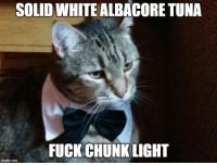 """Amazon, Omg, and Tumblr: SOLID WHITE ALBACORE TUNA  FUCK CHUNK LIGHT <p><a href=""""https://omg-images.tumblr.com/post/166941359207/i-just-bought-my-cat-a-bowtie-from-amazon"""" class=""""tumblr_blog"""">omg-images</a>:</p>  <blockquote><p>I just bought my cat a Bowtie from Amazon!!!</p></blockquote>"""