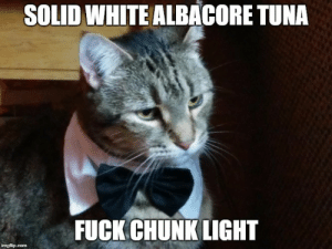 Amazon, Omg, and Tumblr: SOLID WHITE ALBACORE TUNA  FUCK CHUNK LIGHT omg-images:  I just bought my cat a Bowtie from Amazon!!!