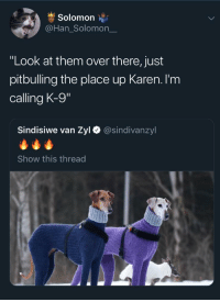 "Solomon, Nice, and Them: Solomon  @Han_Solomon_  ""Look at them over there, just  pitbulling the place up Karen. I'm  calling K-9  Sindisiwe van Zyl  @sindivanzyl  Show this thread This used to be a nice neighborhood!"