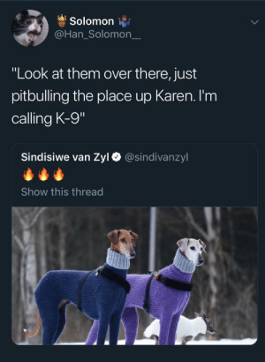 "Dank, Memes, and Target: Solomon  @Han_Solomon_  ""Look at them over there, just  pitbulling the place up Karen. I'm  calling K-9  Sindisiwe van Zyl  @sindivanzyl  Show this thread This used to be a nice neighborhood! by pizza603 MORE MEMES"