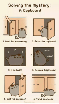 How to solve a mystery.: Solving the mystery:  A Cupboard  1. wait for an opening  2. Enter the cupboard  mew!  mew!  3. It is dark!!  4. Become frightened  O O  6. To be continued  5. Exit the cupboard  pusheen, com How to solve a mystery.