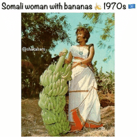 "Africa, Memes, and Work: Somali woman with bananas k 197Os a  chakabarS Analysis of the Economic System of Somalia ""Italian colonialism could not see beyond bananas, practically it didn't develop anything beyond bananas. It was a kind of colonialism that did not even look after its own interests: In other words it was short-sighted. Then came independence and things did not change very much, because the old leaders were simply the puppets controlled by old colonial interests."" - Siyaad Barre Let us investigate the real economic situation of those years and examine the conditions of the agricultural, industrial and service sectors which had survived the difficult events the country experienced, during the scramble for Africa at the end of the Second World War and the necessary creation of a new international order. This will be done with the help of unpublished sources from the historical archives of the Banca d'Italia, which give tangible evidence of its work, even after the end of the Trusteeship. The Economic-Agrarian Activities of the Population and Their Evolution About 4-5 of the population of Somalia was engaged in agriculture and subsistence pastoral farming. The country was divided into four regions: northern Somalia or Migiurtinia with an arid climate and little vegetation, central Somalia or Mudug, equally arid and with a nomadic population, central-southern Somalia, which had the most developed agricultural and animal husbandry sectors and southern Somalia or Lower Juba with thick vegetation and very rich fauna. One of the greatest problems was the shortage of water. Water reserves were limited to the area between the Jubba and Shabelle Rivers and outside of this area there were only wells. The most modern forms of agriculture were concentrated in the southern area where there are greater water resources: banana and sugar cane plantations. In the other regions of the country the lack of water made agricultural resources very scarce, limiting activity to oases where date palms were cultivated. There were, therefore, two basic agricultural sectors: one of a modern type oriented towards exportation, whose main crops were sugar cane, bananas, cotton, peanuts, cassava and grapefruit; more below 👇🏿 chakabars"
