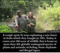 Bengal: Some Amazing Facts  A couple spent 26 years replanting a rain forest  in India which they bought in 1991. Today, it  covers over 300 acres of wildlite that is home to  more than 200 globally endangered species o  plants and animals; including Asian elephants  and Bengal tigers.