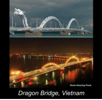 Vietnam: Some Amazing Facts  Dragon Bridge, Vietnam