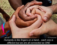 Memes, 🤖, and Amazing Facts: Some Amazing Facts  Humanity is like fingers on a hand... each one is  different but we are all connected as ONE