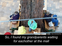 Cute, Dank, and Amaz: Some Amazing Facts  So, I found my grandparents waiting  for eachother at the mall This is just too damn cute 😂😊