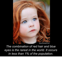 red hairing: Some Amazing Facts  The combination of red hair and blue  eyes is the rarest in the world. It occurs  in less than 1% of the population.