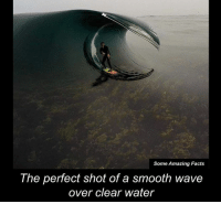Dank, Smooth, and Waves: Some Amazing Facts  The perfect shot of a smooth wave  over clear water Wow 😍 This is so amazing