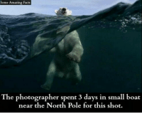 north pole: Some Amazing Facts  The photographer spent 3 days in small boat  near the North Pole for this shot.