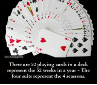 Facts, Memes, and Suits: Some Amazing Facts  There are 52 playing cards in a deck  represent the 52 weeks in a year The  four suits represent the 4 seassons.