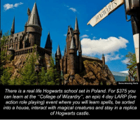 "Memes, Poland, and 🤖: Some Amazing Facts  There is a real life Hogwarts school set in Poland. For $375 you  can learn at the ""College of Wizardry"", an epic 4 day LARP (live  action role playing) event where you will learn spells, be sorted  into a house, interact with magical creatures and stay in a replica  of Hogwarts castle."