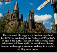 "College, Facts, and Life: Some Amazing Facts  There is a real life hogwarts school set in poland.  For 5 you can learn at the ""college of Wizardry"",  an epic 4 day LARP (live action role playing) event  where you will learn spells, be sorted into a house,  interact with magical creatures and stay in a replica  of Hogwarts castle."