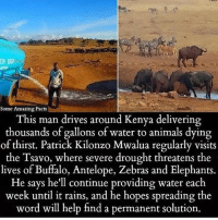 ➖➖➖➖➖➖➖➖➖➖➖➖➖➖➖➖➖➖➖ Patrick Kilonzo Mwalua drives for hours, a his own personal cost, to provide water for thirsty buffalo, elephants, zebras and antelope in drought-stricken Tsavo West National Park. The 41 year old delivers 3,000 gallons of water in his special water truck every evening to the Tsavo West National Park. The animals have become so used to the routine that they are often found waiting beside the empty concrete bowls. ❤ ➖➖➖➖➖➖➖➖➖➖➖➖➖➖➖➖➖➖➖ GoodPeopleStillExist PatrickKilonzoMwalua Kenya theblaquelioness Check my bio section for Patrick Kilonzo Mwalua's Gofundme link: Some Amazing Facts  This  man drives around Kenya delivering  thousands of gallons of water to animals dying  of thirst. Patrick Kilonzo Mwalua regularly visits  the Tsavo, where severe drought threatens the  lives of Buffalo, Antelope, Zebras and Elephants.  He says he'll continue providing water each  week until it rains, and he hopes spreading the  word will help find a permanent solution. ➖➖➖➖➖➖➖➖➖➖➖➖➖➖➖➖➖➖➖ Patrick Kilonzo Mwalua drives for hours, a his own personal cost, to provide water for thirsty buffalo, elephants, zebras and antelope in drought-stricken Tsavo West National Park. The 41 year old delivers 3,000 gallons of water in his special water truck every evening to the Tsavo West National Park. The animals have become so used to the routine that they are often found waiting beside the empty concrete bowls. ❤ ➖➖➖➖➖➖➖➖➖➖➖➖➖➖➖➖➖➖➖ GoodPeopleStillExist PatrickKilonzoMwalua Kenya theblaquelioness Check my bio section for Patrick Kilonzo Mwalua's Gofundme link