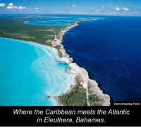 Memes, Bahamas, and 🤖: Some Amazing Facts  Where the Caribbean meets the Atlantic  in Eleuthera, Bahamas.