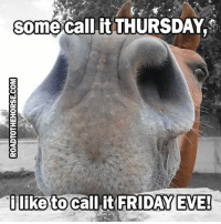 Friday, Memes, and Happy: Some call it THURSDAY  i like to call it FRIDAY EVE! Happy Thursday from #RTTH. #AlmostBarnTime