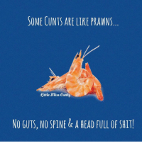Head, Memes, and Shit: SOME CUNTS ARE LIKE PRAWNS  Rittle Miss Cunty  NO GUTS, NO SPINE& A HEAD FULL OF SHIT