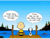 Live: Some day,  we will all die,  Snoopy!  True,  but on all  the other days,  we will not.  Live