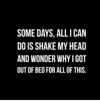 Shake My Head: SOME DAYS, ALL I CAN  DO IS SHAKE MY HEAD  AND WONDER WHYI GOT  OUT OF BED FOR ALL OF THIS