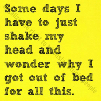 Shake My Head: Some days I  have to just  shake my  head and  wonder why I  got out of bed  for all this.